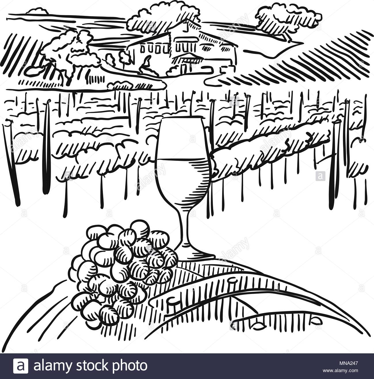 1300x1315 Vineyard With Hills And Glass Of Vine In Foreground, Vector