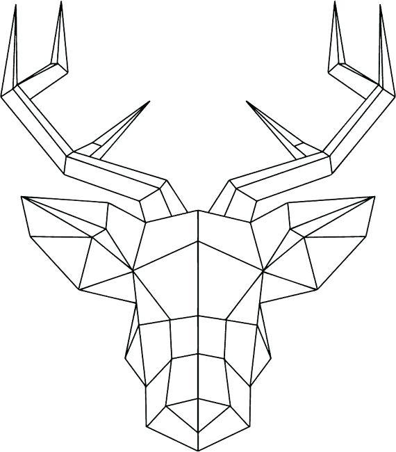 570x650 Present Drawing Animals Using Geometric Shapes V6327017 Draw