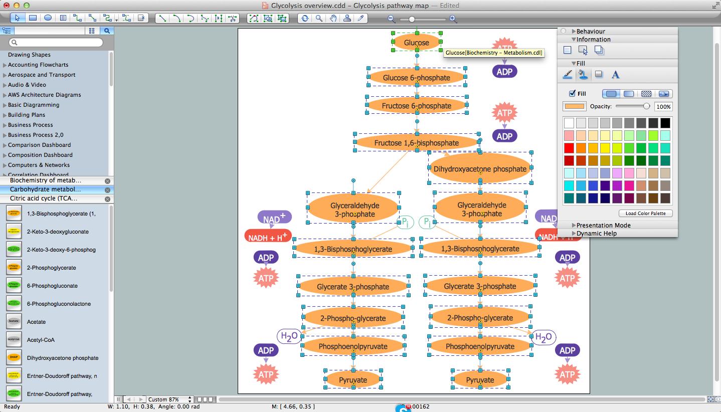 1438x822 Biology Drawing Software