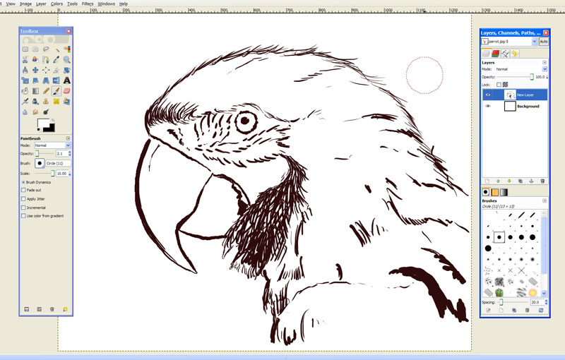 800x510 Free Drawing Software