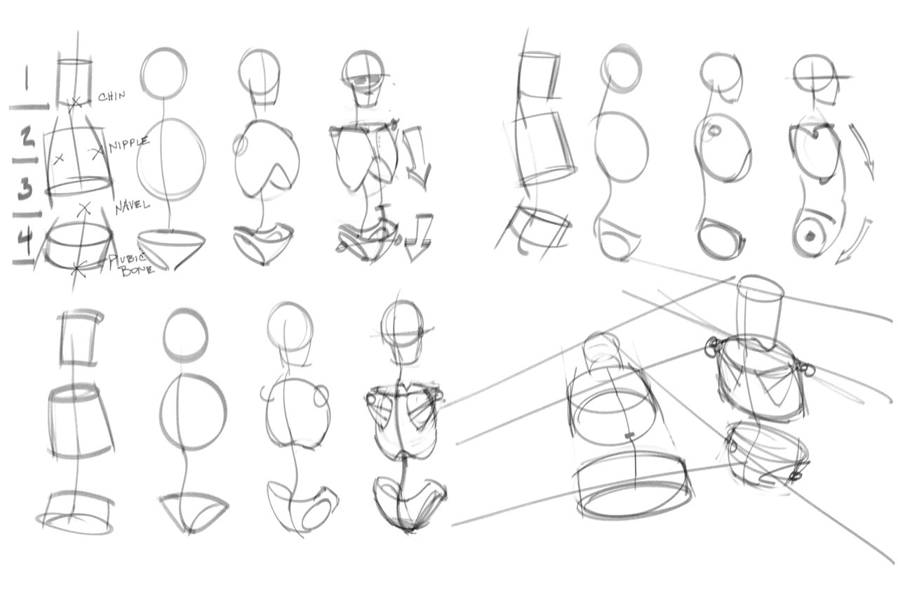 1280x853 Tips And Tricks On Drawing Anatomy, With A Little