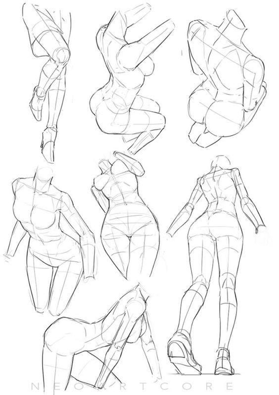 564x798 Anatomy And Tutorials Pose, Anatomy