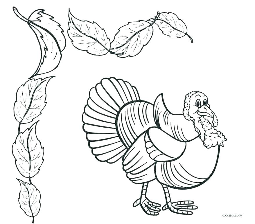 878x774 Lily Pad Flower Coloring Pages And Medium Size Of Pad Coloring