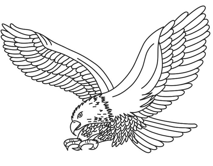 700x544 9 Best Eagle Embroidery Patterns Images On Embroidery