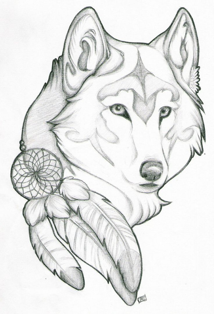 736x1081 Cool Simple Drawing Ideas Wolf Drawing
