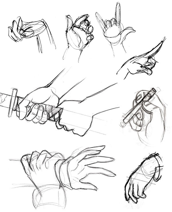 600x741 Human Anatomy Fundamentals How To Draw Hands