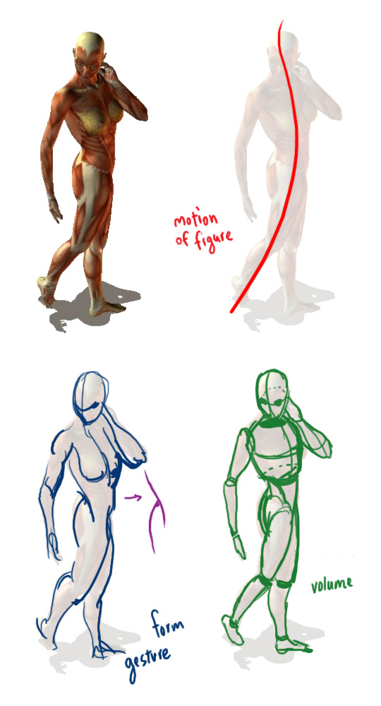 540x1000 Drawing Workshop 1 Gesture Drawings