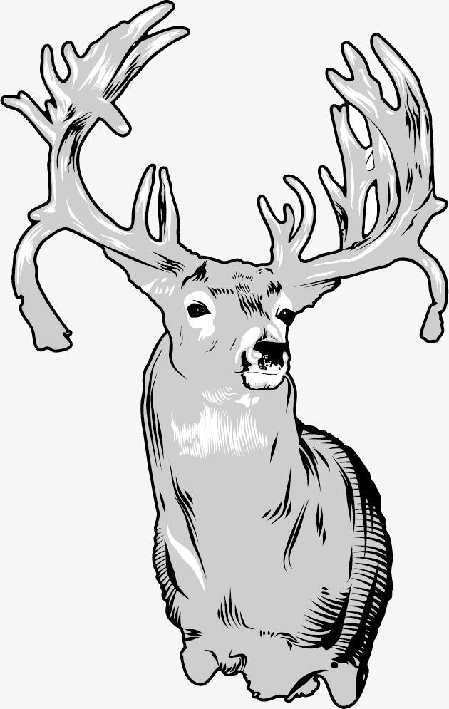 630x995 Line Drawing Deer, Line Drawing Animals, Elk, Line Png Image
