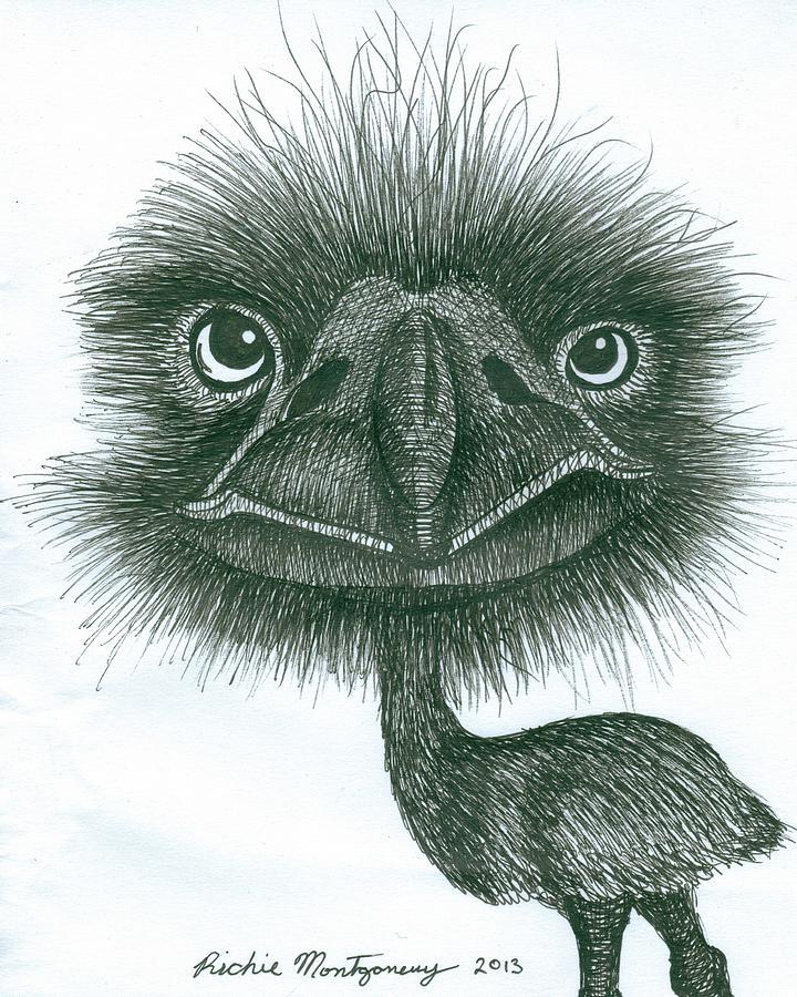 720x900 Emu Drawing By Richie Montgomery