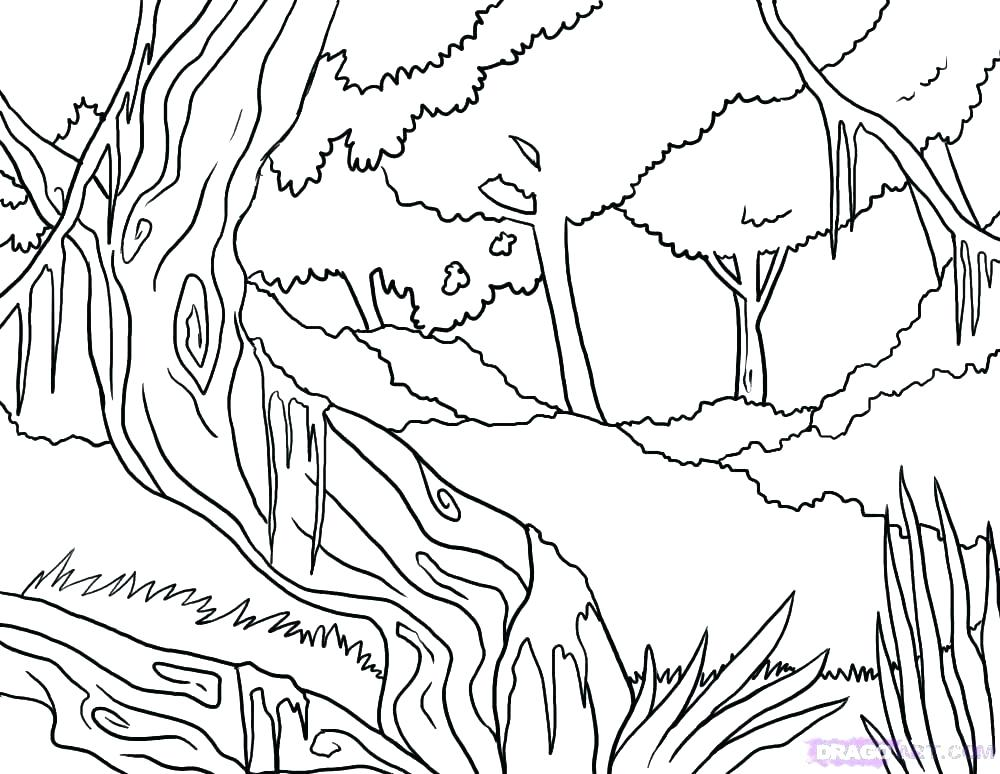 1000x774 Enchanted Forest Coloring Pages Pdf Page Rain