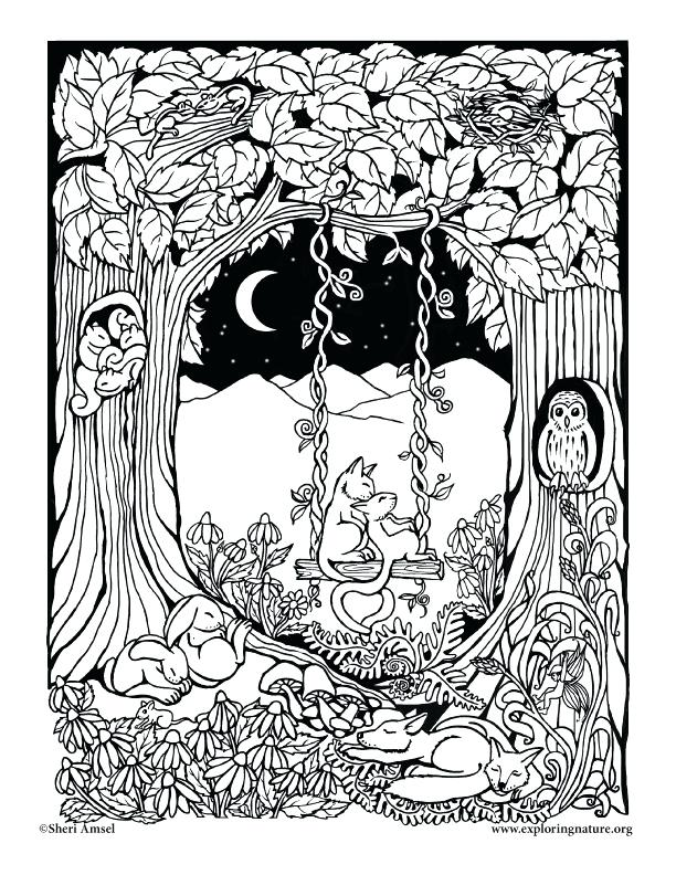 612x792 Sleeping Forest Coloring Page Sleeping Forest Enchanted Forest