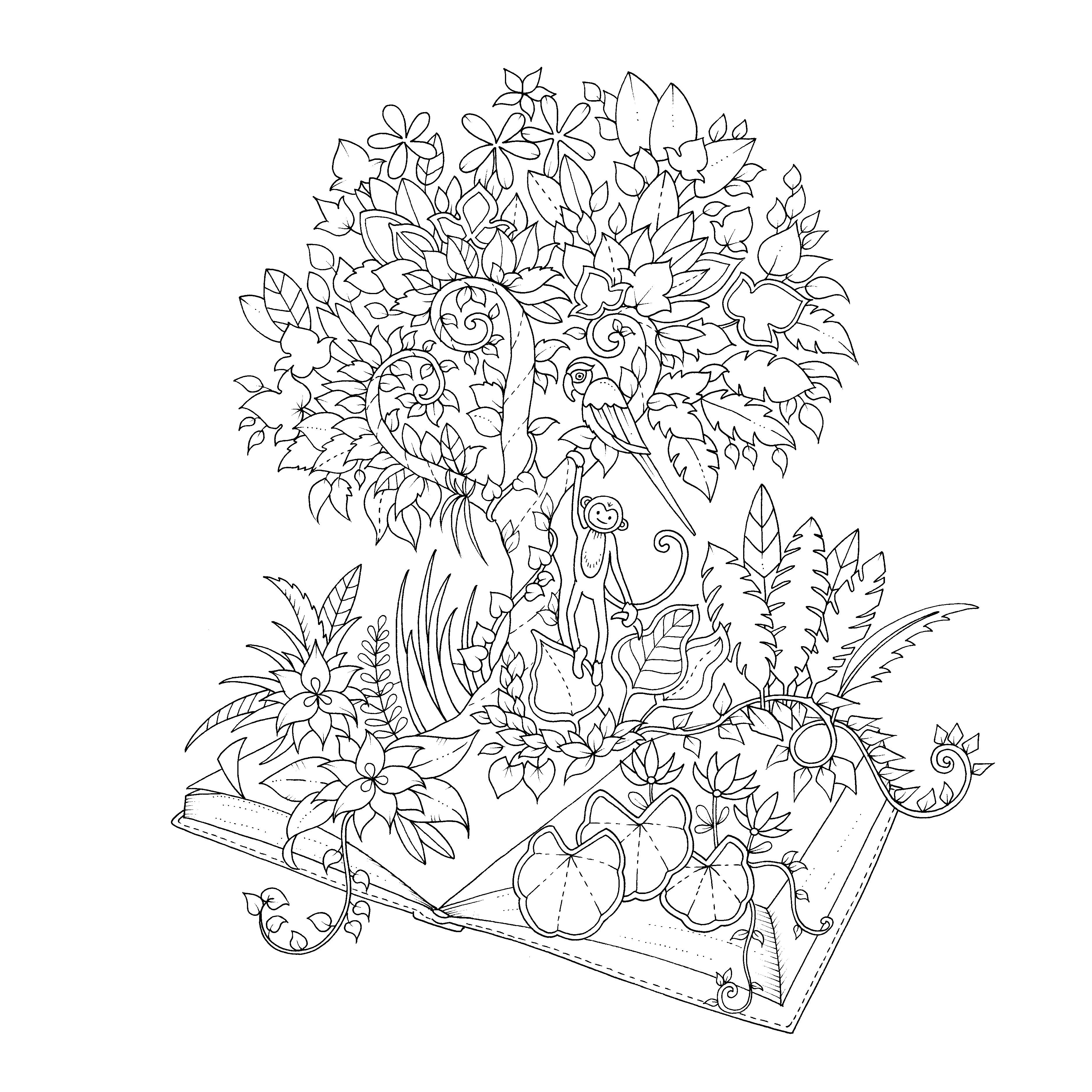 Enchanted Forest Drawing Book at GetDrawings.com   Free for personal ...