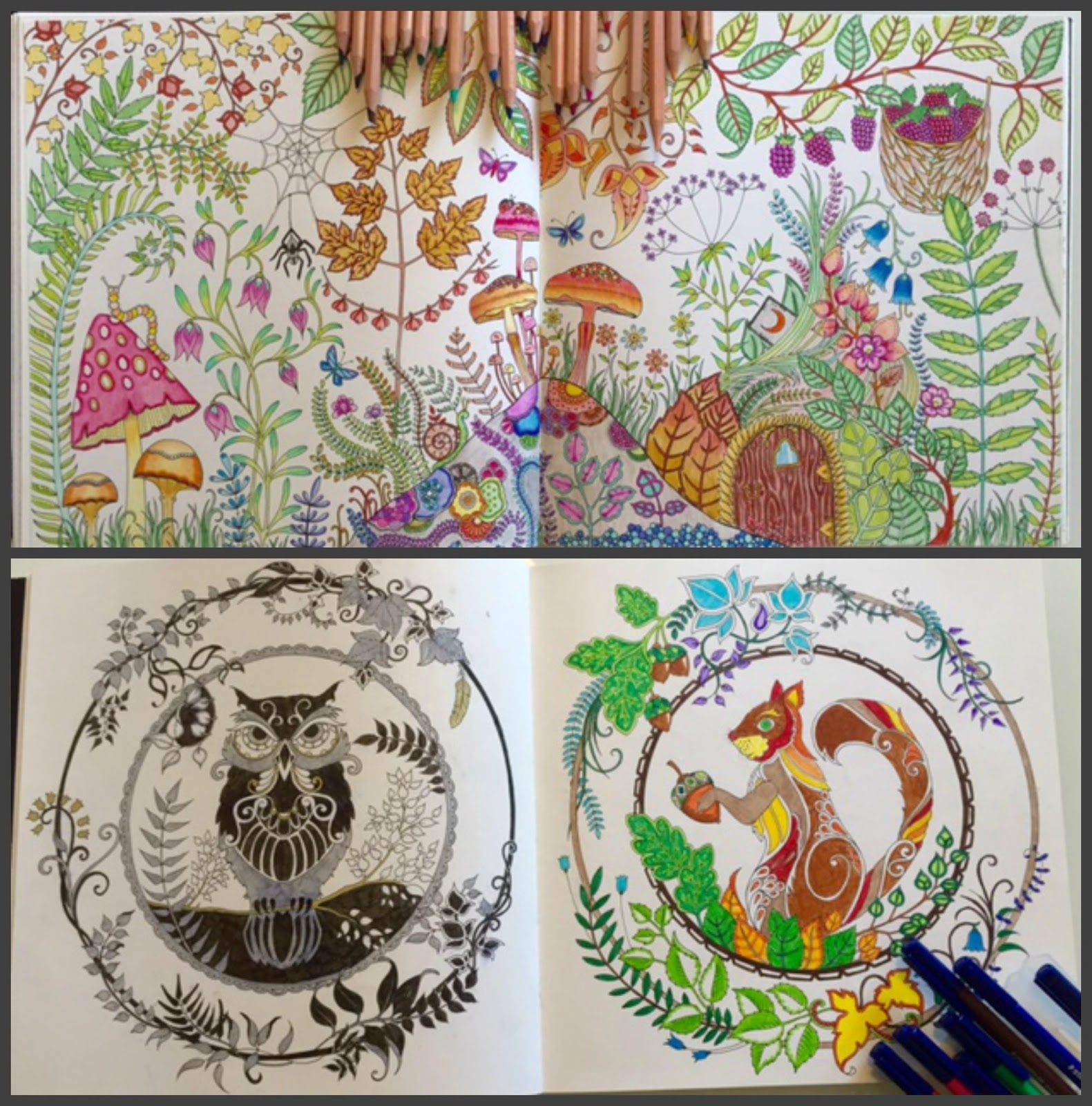 1581x1600 28 Collection Of Enchanted Forest Drawing Book High Quality