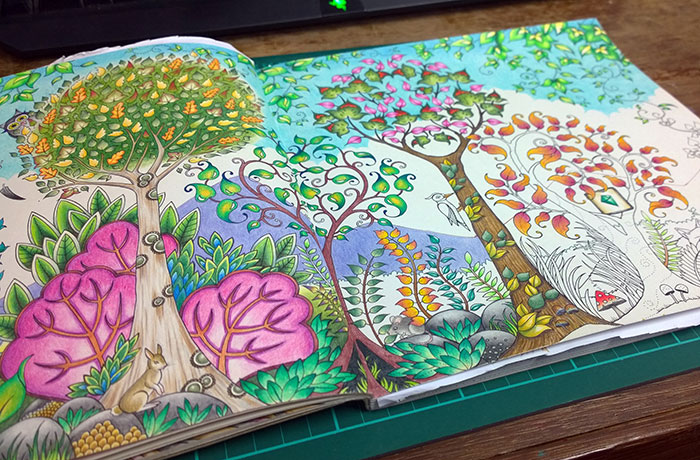 Enchanted Forest Drawing Book At GetDrawings