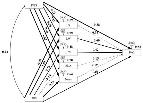 556x403 Results Path Models To Estimate The Direct Effects