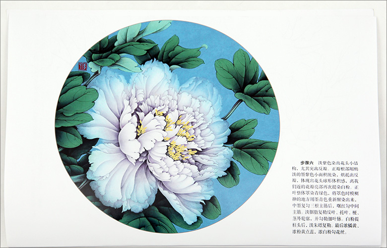 780x501 Famous Line Drawing And Color Peony Peony Twelve Step Explanation