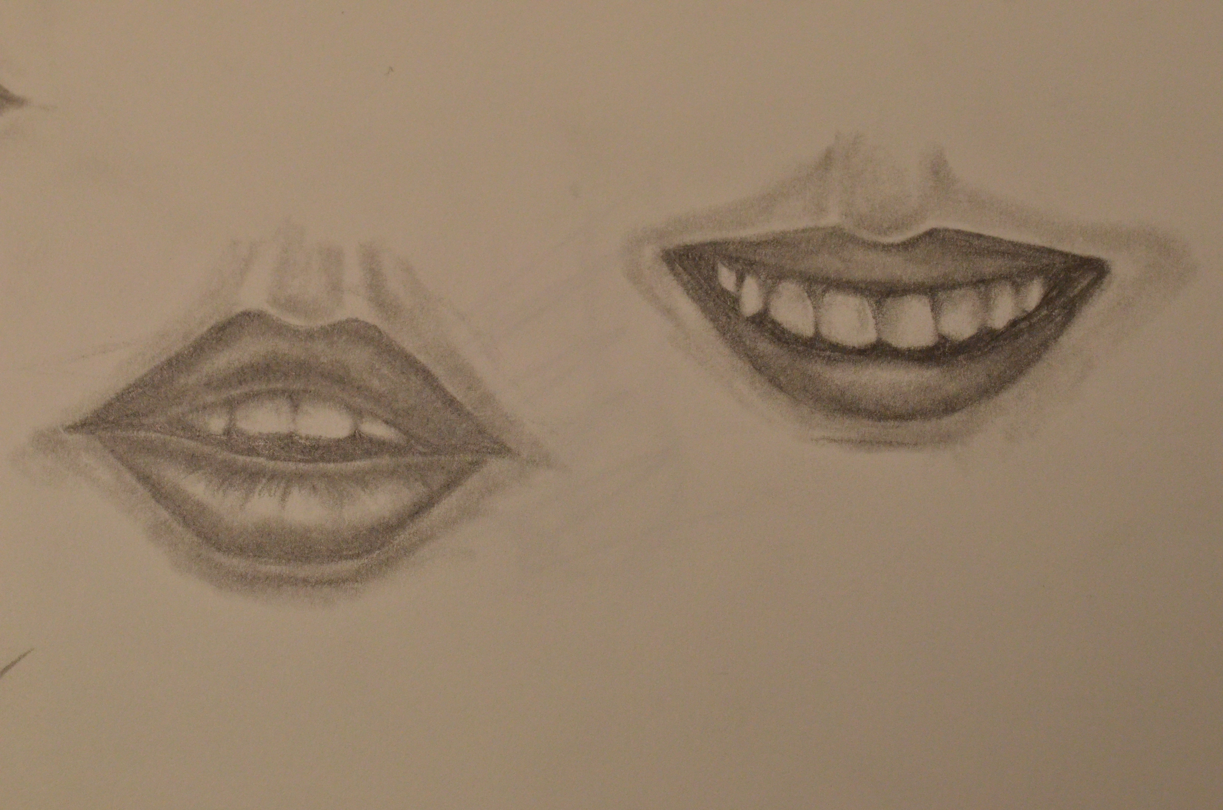 4928x3264 Drawing Of Facial Features Facial Feature Drawings Mrs Bailey'S