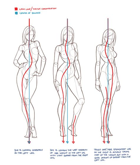 Female Body Drawing Reference at GetDrawings com | Free for