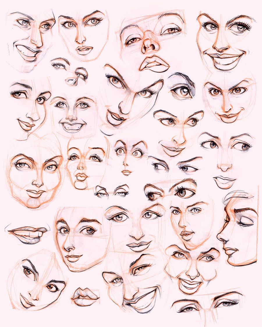Female Face Drawing Reference at GetDrawings com | Free for personal