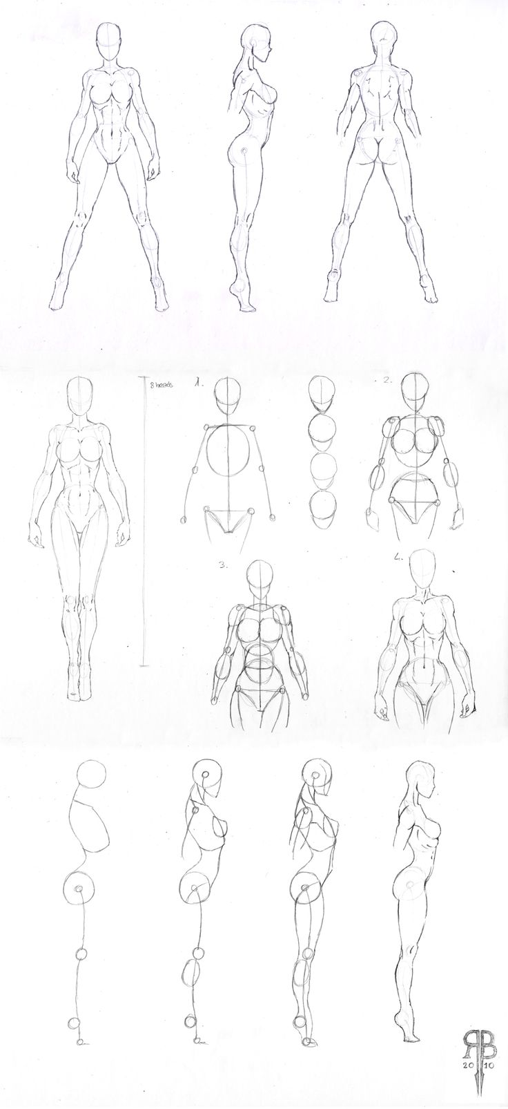 736x1605 558 Best Pencil Gang Images On Figure Drawing