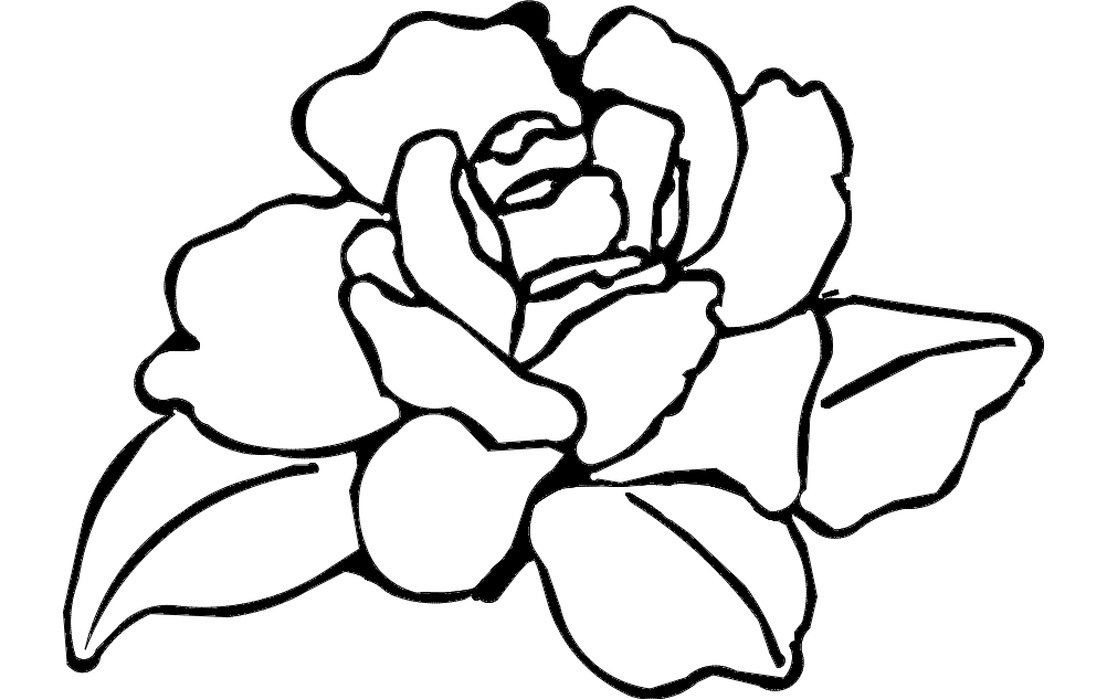 1002x633 Flower Rose Dxf File Free Download