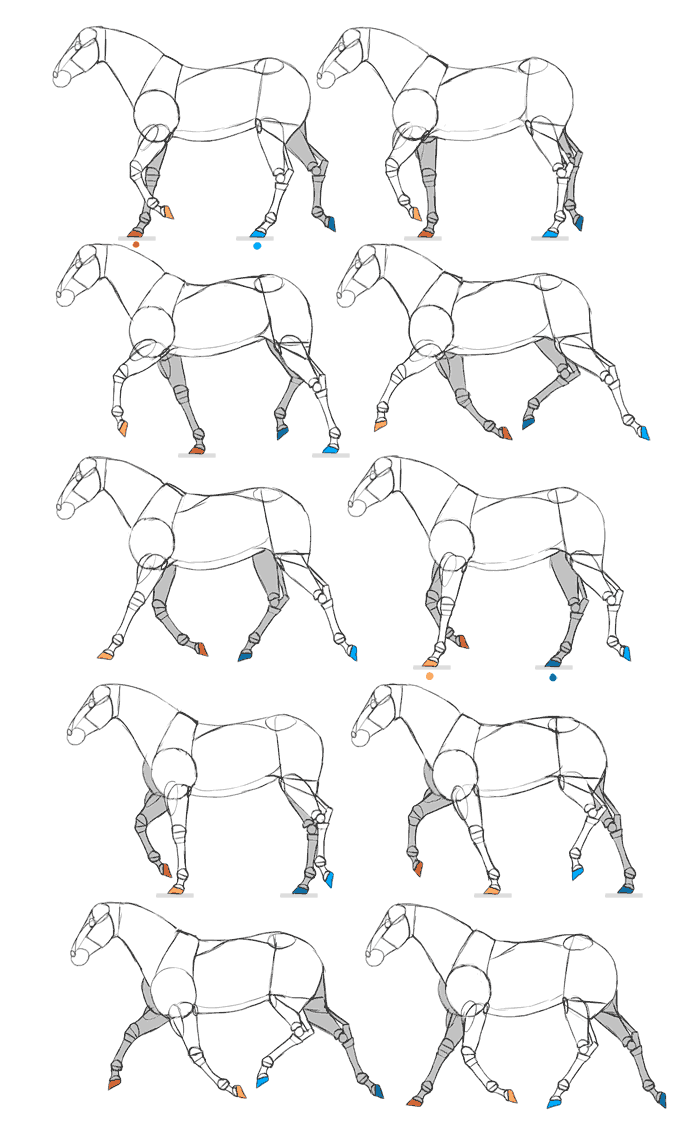 700x1130 Drawing And Animating Horses A Flipbook Tutorial Sketchbook