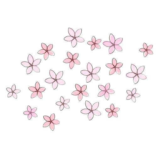 500x500 Transparent Tumblr Floral Overlays, Wallpaper