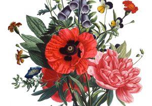 300x210 Tumblr Drawings Flower Eleletsitz Transparent Flower Drawing
