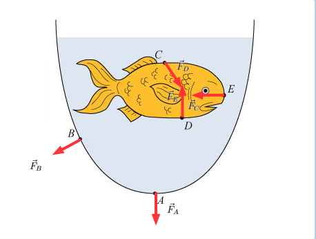 458x346 Force On A Goldfish Vector Drawing A Fishbowl Cont