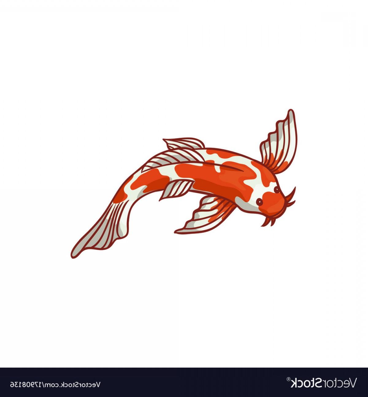 1200x1296 Top View Japanese Asian Koi Carp Goldfish Vector Shopatcloth