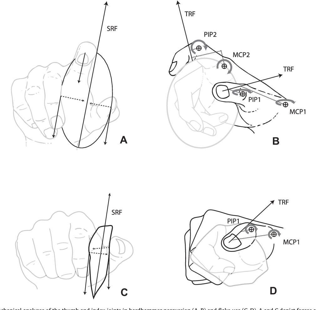 1010x992 Figure 3 From Hand Biomechanics During Simulated Stone Tool Use