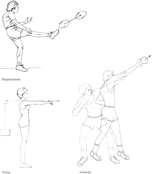 605x682 Terminology And Measurement In Biomechanics Kinesiology
