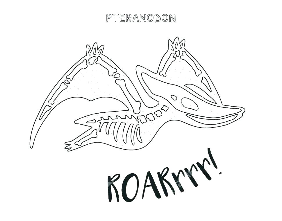970x761 Fossil Coloring Pages Dinosaur Fossil Coloring Pages Coloring Page