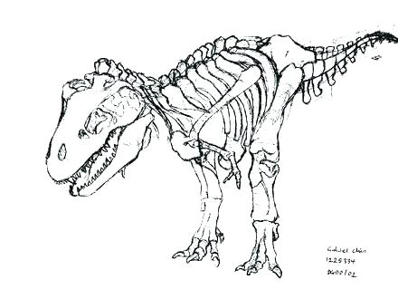 440x330 Fossil Coloring Pages Free Printable Fossil Coloring Pages Fossil