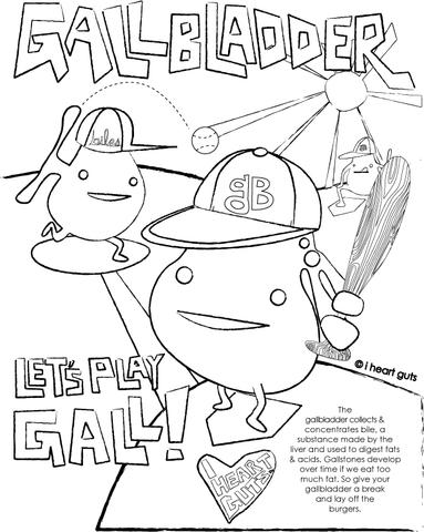 383x480 Gallbladder Coloring Page I Heart Guts