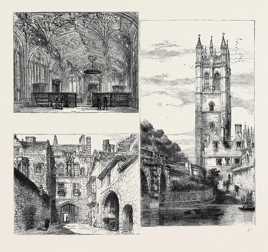 900x846 Oxford Gateway, New College Down Left The Divinity School Drawing