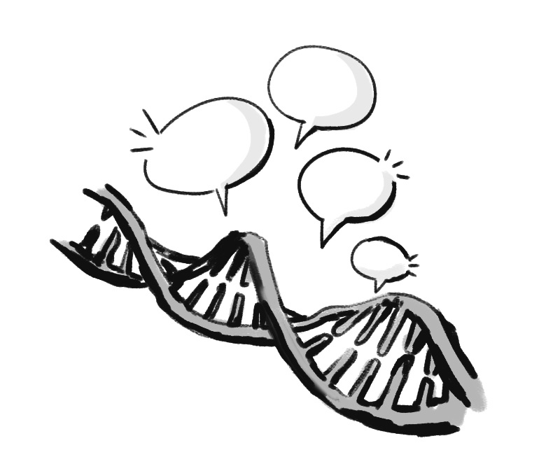 790x673 Researchers Discover A Gene Linked To Language