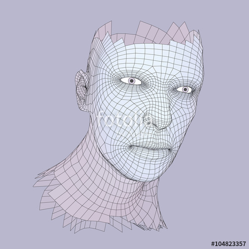500x500 Head Of The Person From A 3d Grid. Human Head Wire Model. Human