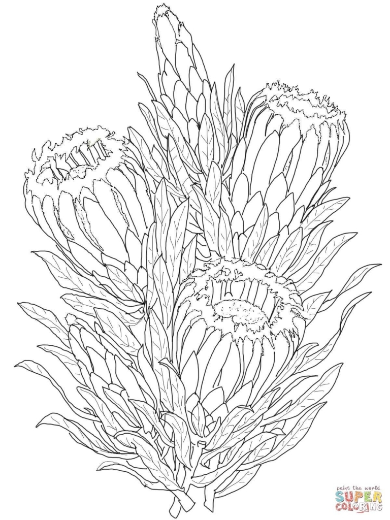 768x1024 Unbelievable Gladiolus Coloring Page Printable Pict For Flower