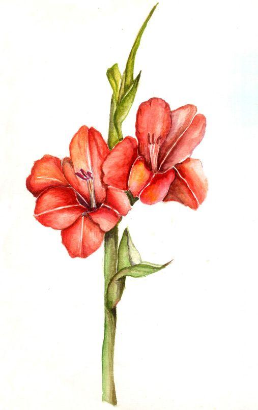 507x806 Still Life Drawings By Namrata Kumar