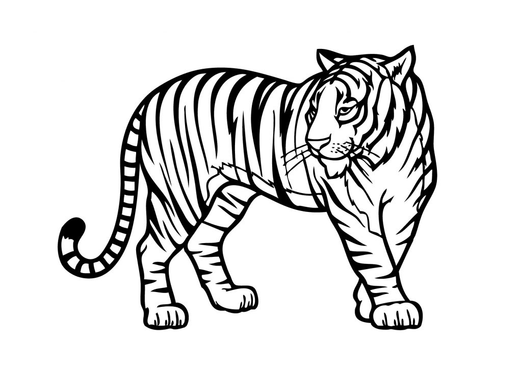 1024x730 Formalbeauteous Realistic Jungle Animals Coloring Pages Free