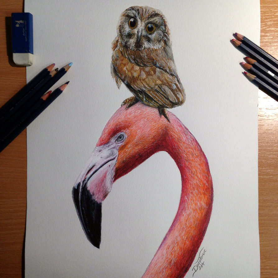 894x894 Best Friends Color Pencil Drawing By Atomiccircus