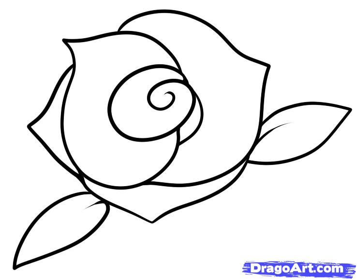 738x579 Rose Easy Drawing How To Draw A Rose Step Step Easy Google Search