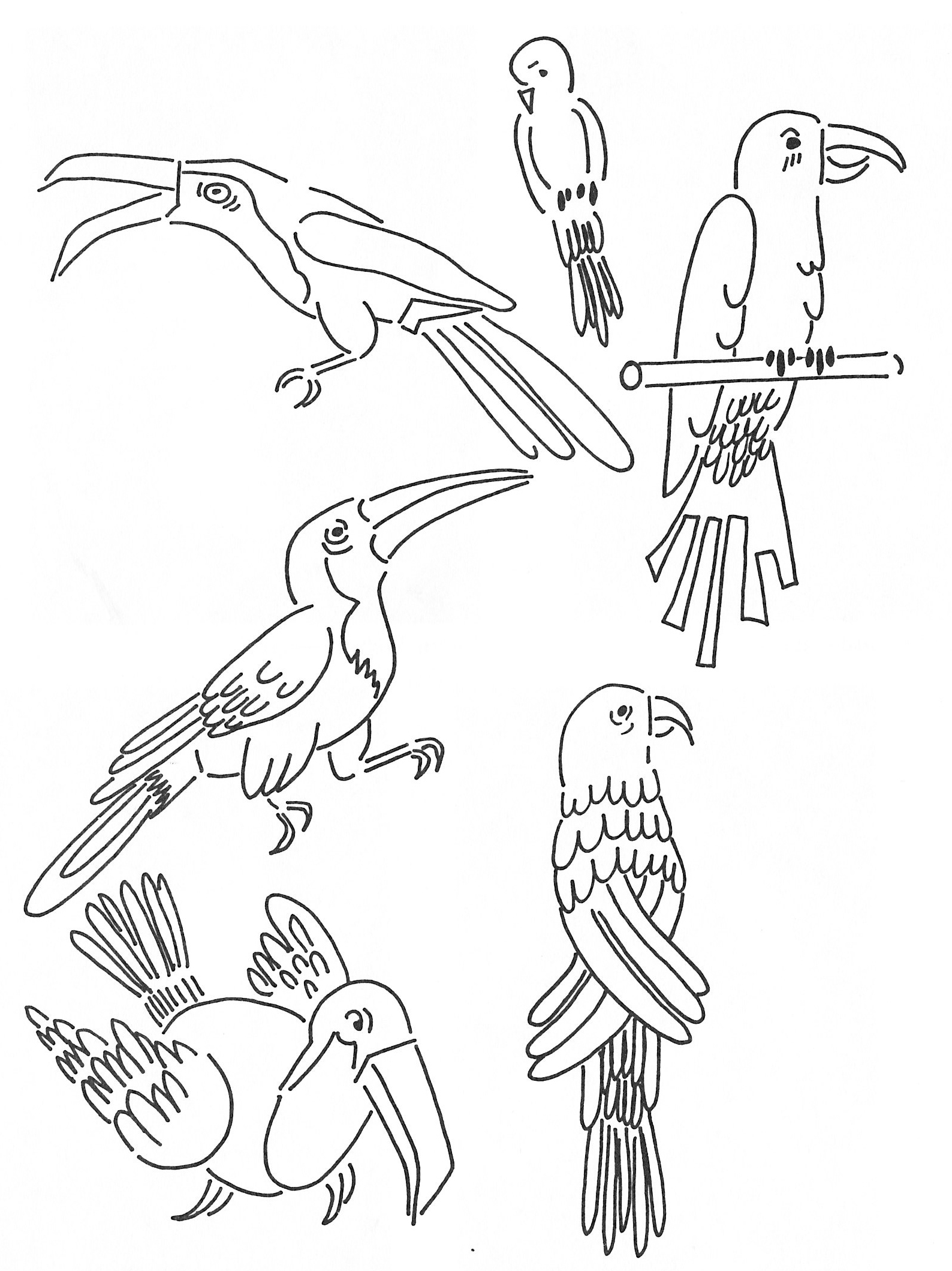 1588x2118 Elements Of A Parrot Art Elements For Kids