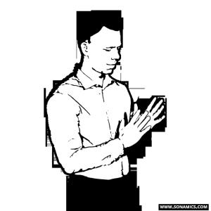 300x300 Body Language And Social Dynamics Sonamics
