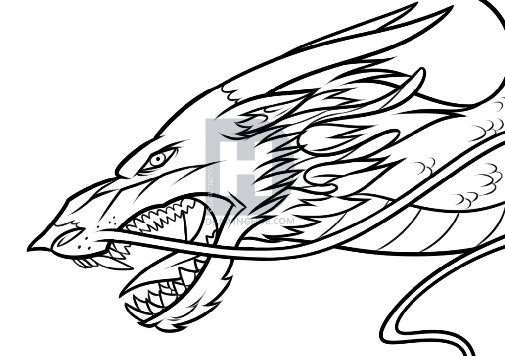 1021x720 Drawing A Chinese Dragon Head, Step By Step, Drawing Guide, By