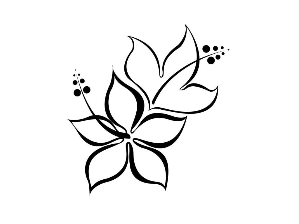 1024x768 Simple Flower Line Drawing Hibiscus Flower For Drawing Simple