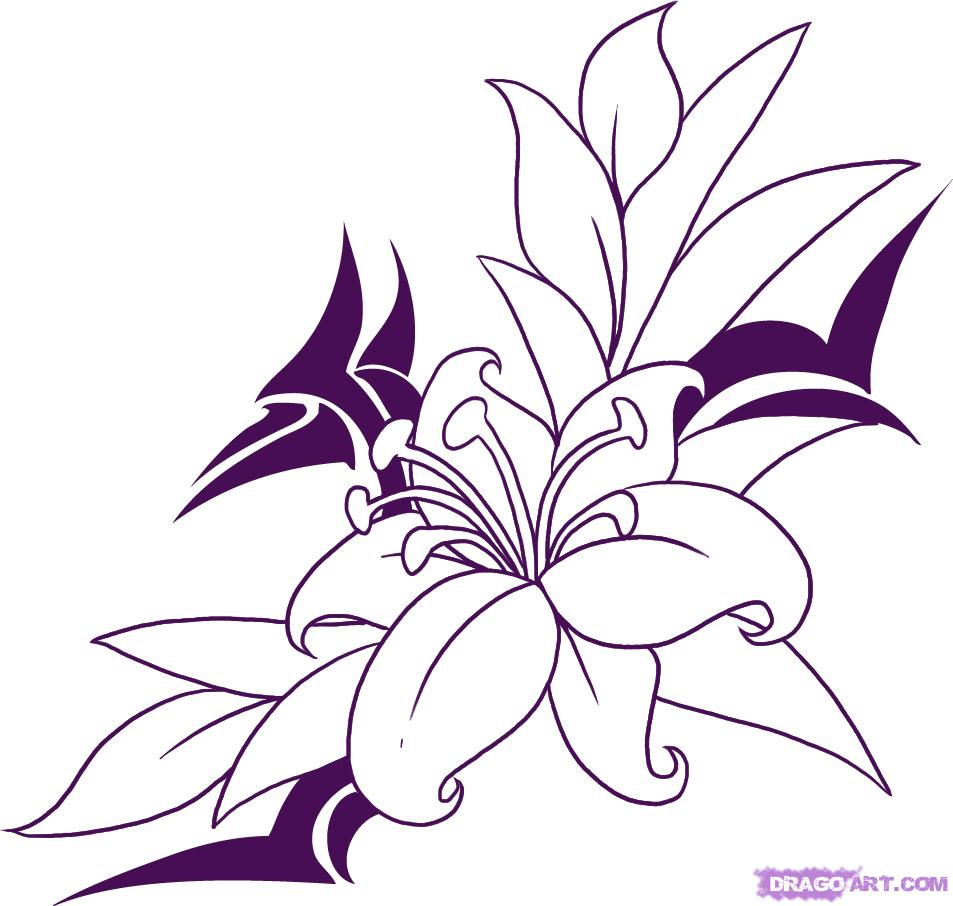 Hibiscus Flower Line Drawing At Getdrawings Free For Personal