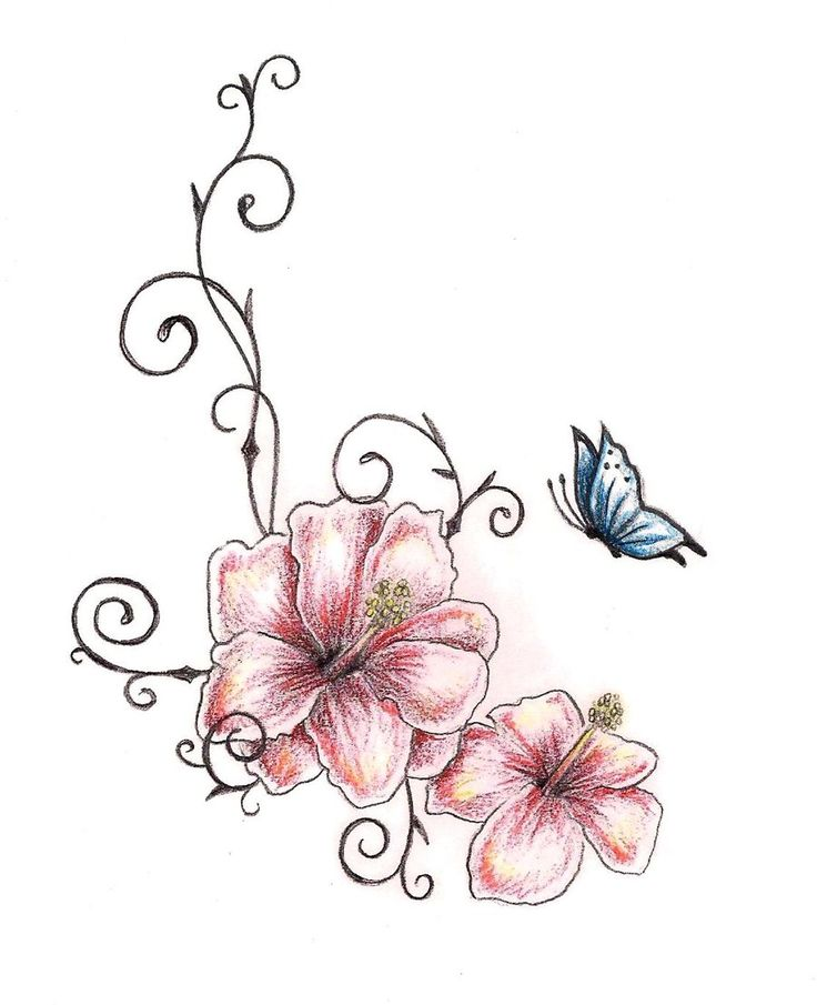 736x905 Template For Hibiscus Tattoo Tattoo Designs And Templates