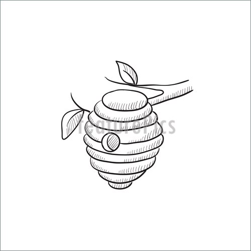 500x500 Bee Hive Sketch Icon. Illustration